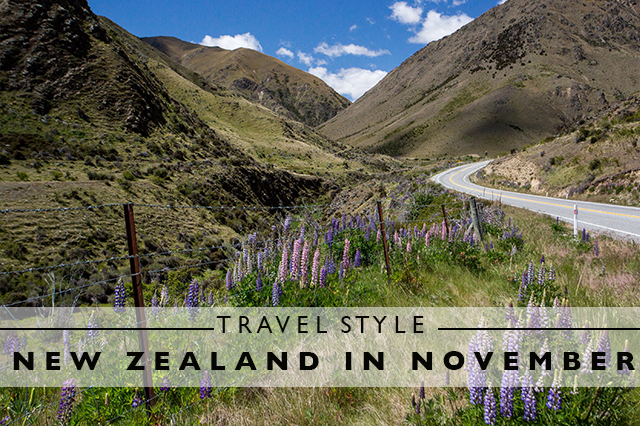 travel style for new zealand