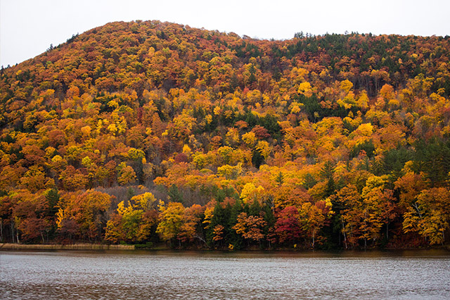 Vermont hillside with Fall colors