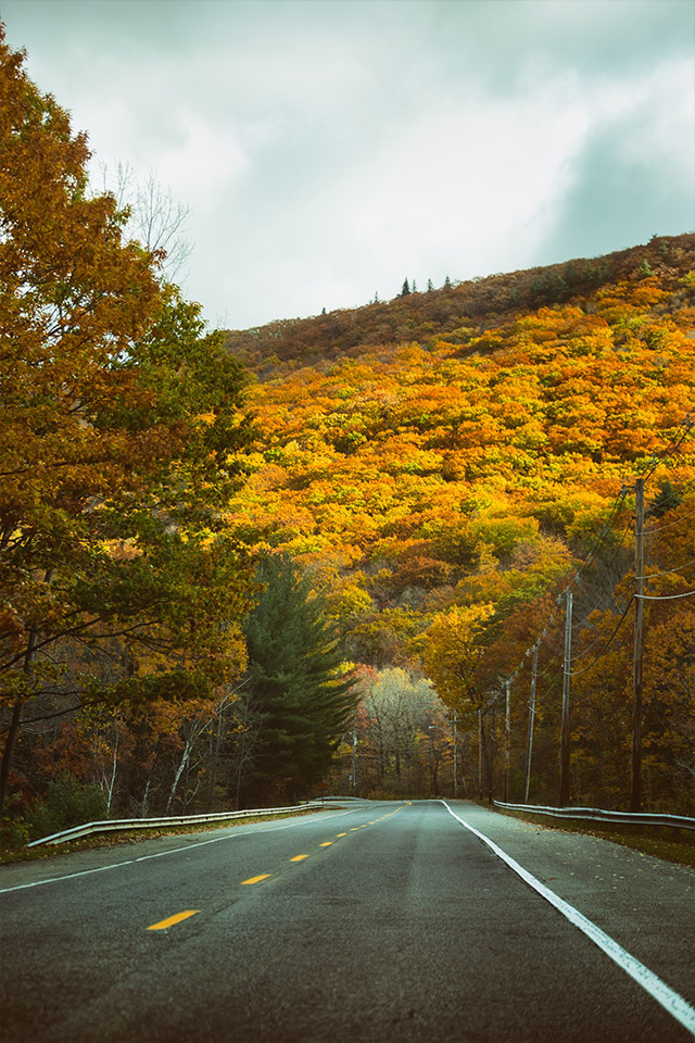 Fall color in New England