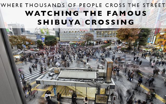 Where Thousands of People Cross the Street : Watching the Famous Shibuya Crossing