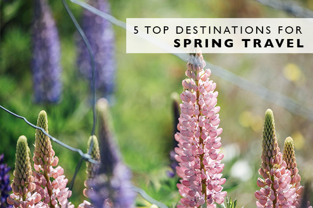 top destinations for Spring Travel