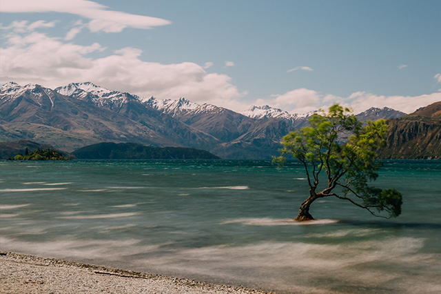 New Zealand in the summer