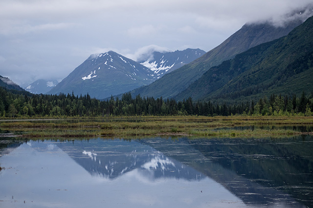 Alaska in the summer