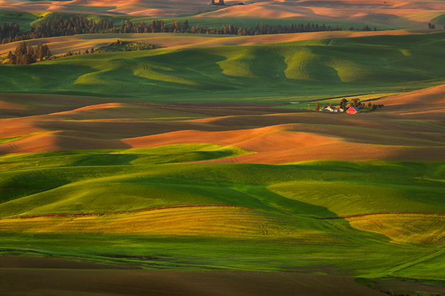 The Palouse and Steptoe Butte