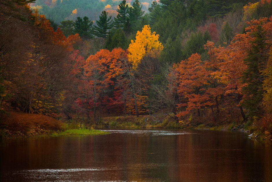 Fall colors in Vermont USA