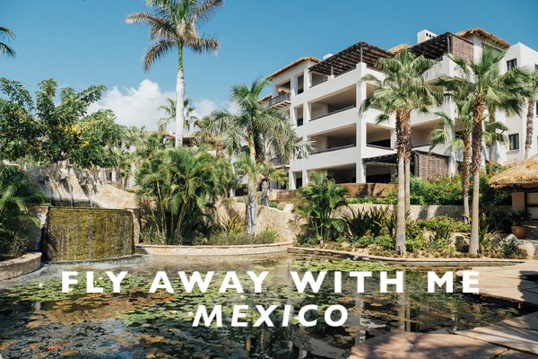 Fly Away With Me : Mexico