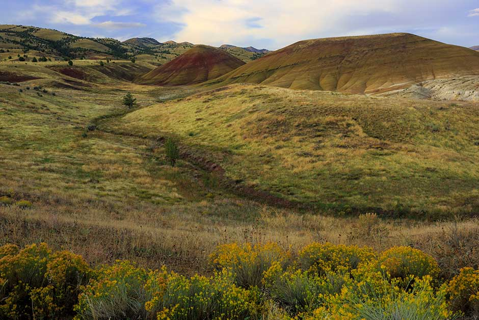 painted hills Central Oregon