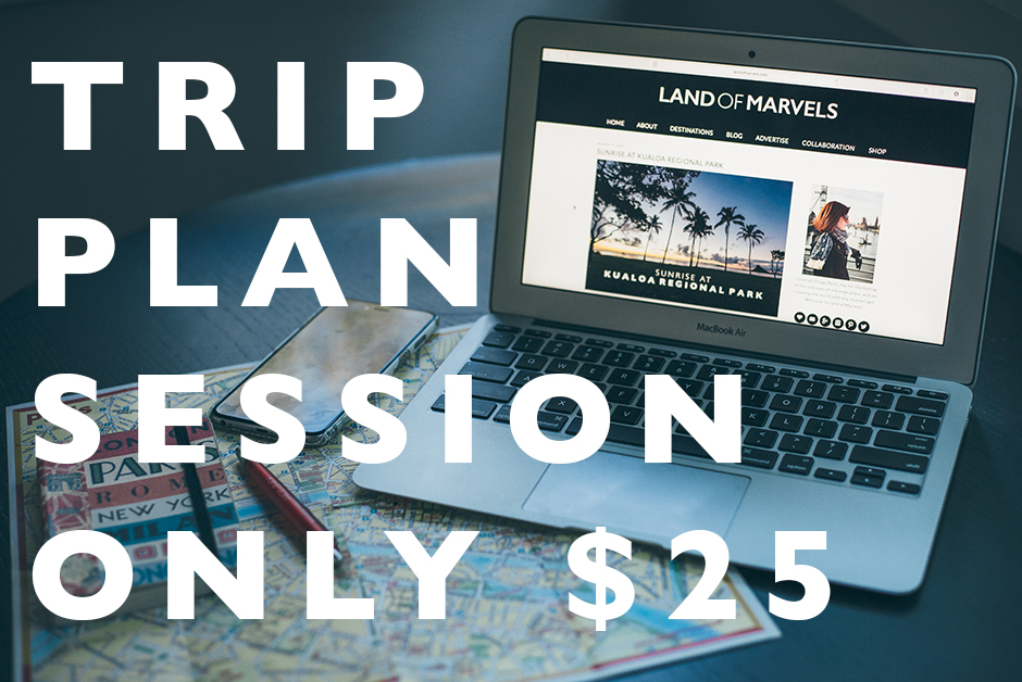 Trip planning session only $25
