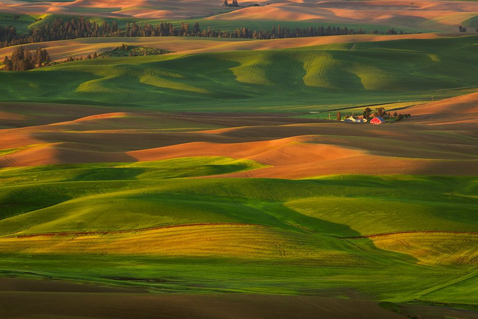 the Palouse Washington