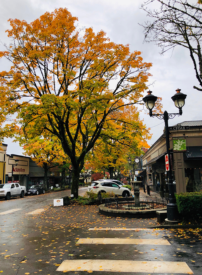 camas Washington small town autumn