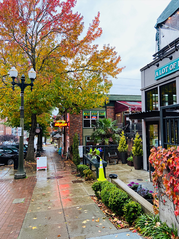 Fall in Fairhaven washington