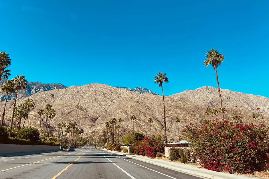 palm springs in November