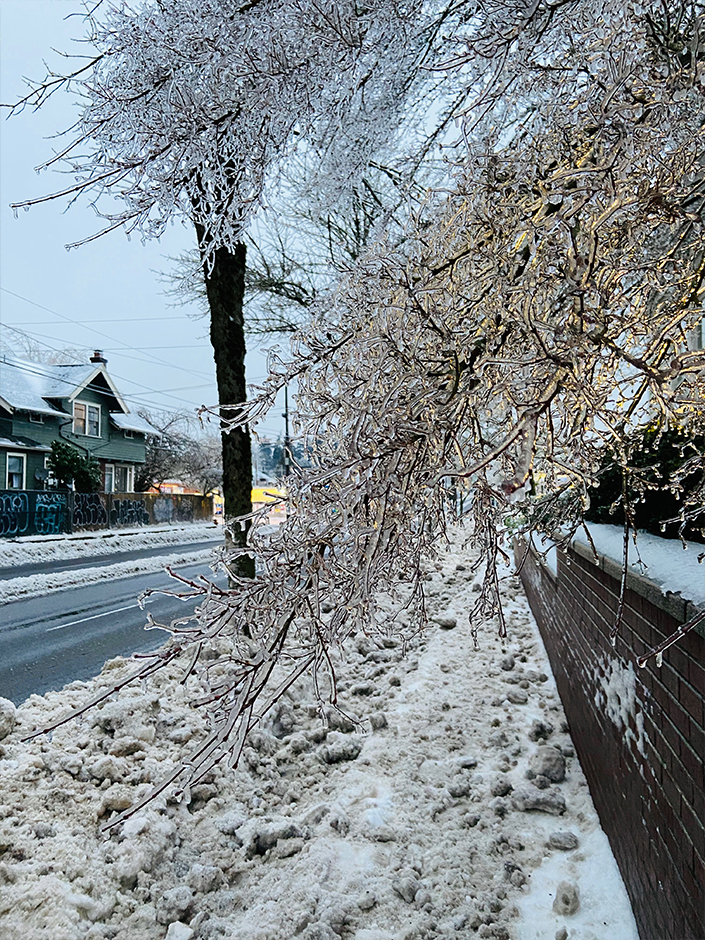 ice storm in Portland