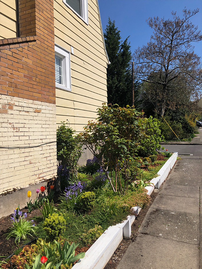 retaining wall before makeover