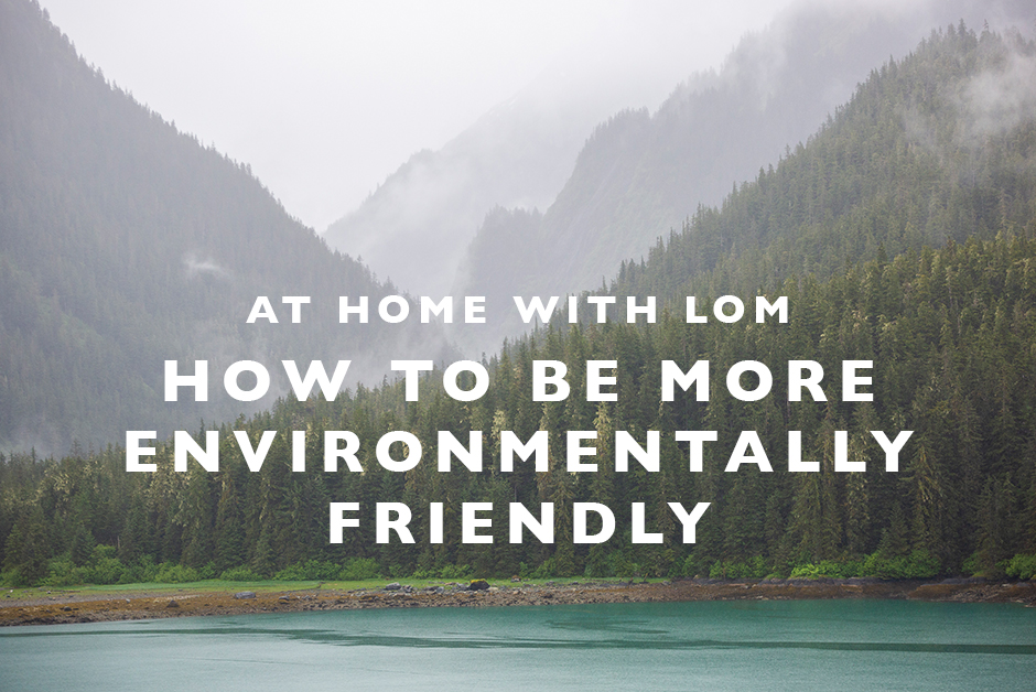how to be more environmentally friendly at home