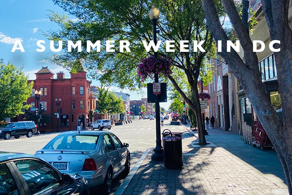 summer week in dc